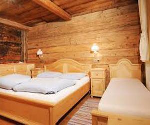 Свойства и применение древесины